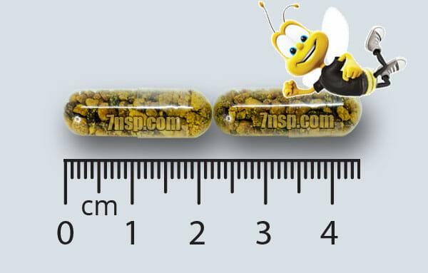 Би Поллен НСП bee pollen бад пчелиная пыльца капсулах отзывы инструкция по применению цена купить Москва СпБ Киев Харьков Одесса