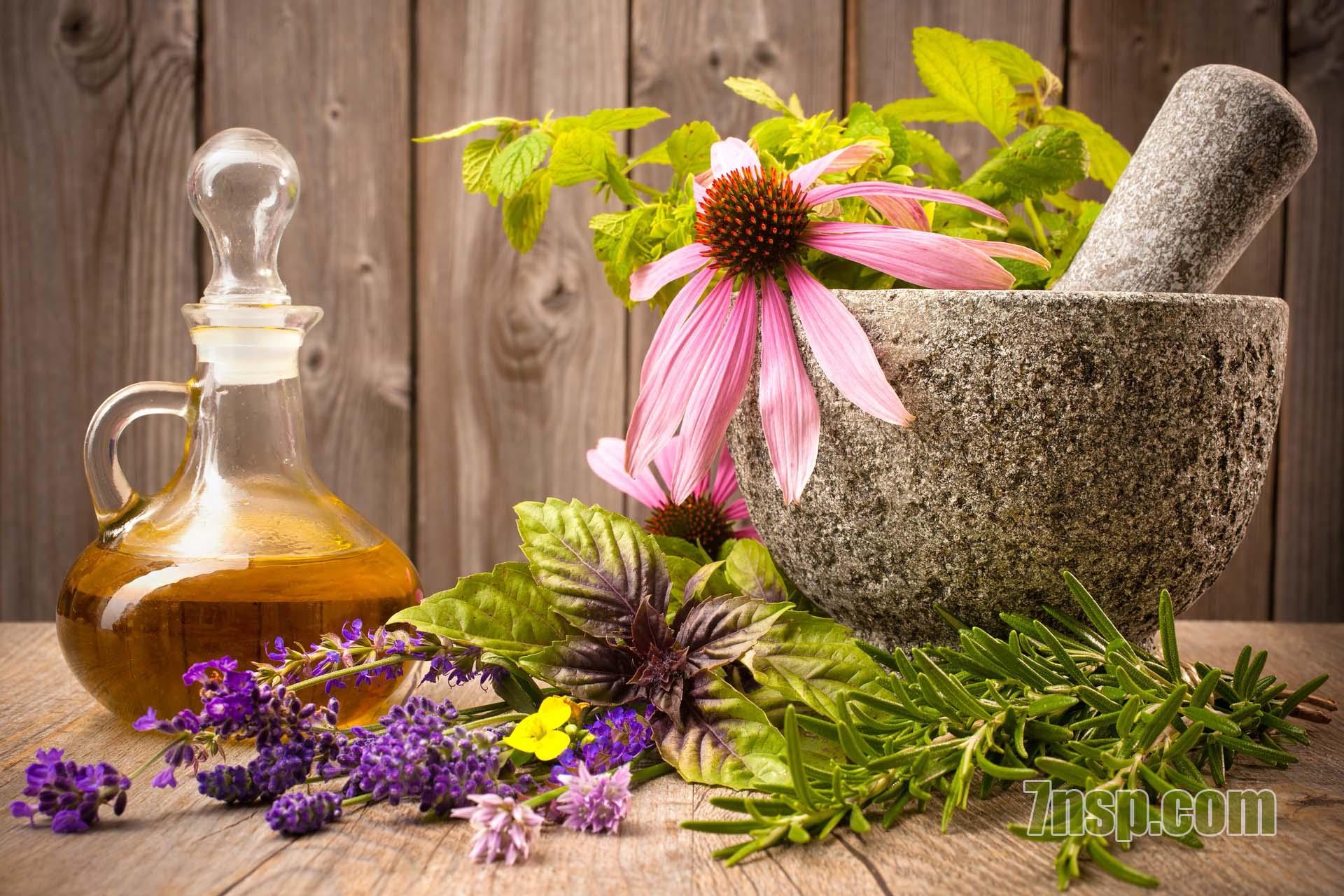 Натуральные ингредиенты в составе бад, препаратов, продукции НСП