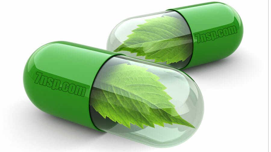 Полезные вещества для здоровья организма человека в составе препаратов