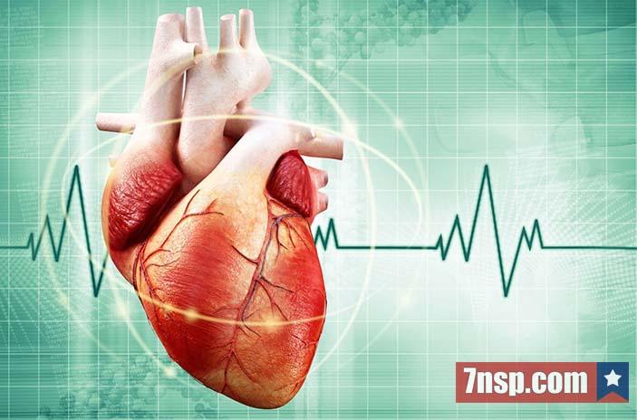 Набор здоровое сердце НСП программа СпБ, Киев, Москва, Харьков, Одесса, Днепр, Екатеринбург